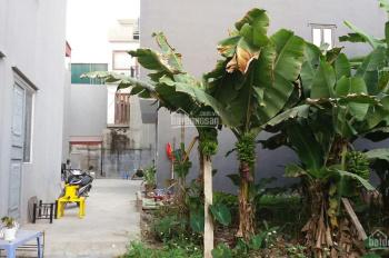 chính chủ BÁN ĐẤT - tổ 12, phường Thạch Bàn, quận Long Biên