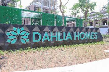 Chính chủ căn liền kề góc ST5 Dahlia homes, dự án Gamuda Yên Sở Hoàng Mai