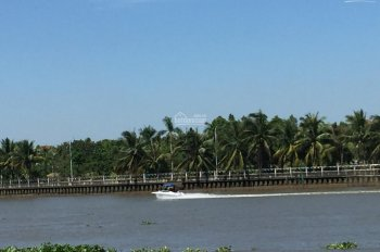 Giảm 1 tỉ bán gấp. Mặt tiền sông Sài Gòn, Bình Mỹ, Củ Chi, hàng hiếm, 6,5 tỷ 1090m2, thổ cư 460m2