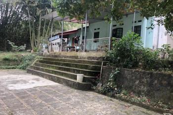 Chuyển nhượng 1ha khuôn viên nhà vườn tại xóm Đá Bạc, Xã Liên Sơn, Lương Sơn, Hòa Bình