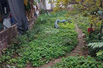 Bán đất thổ cư đẹp 80m2 ở phường Đồng Mai, ngõ thông rộng, ô tô vào nhà hơn 1 tỷ
