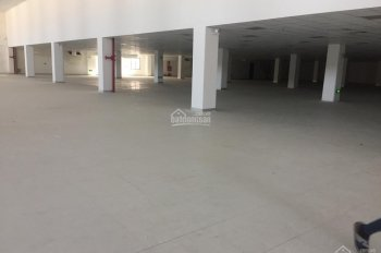 Cho thuê xưởng trong KCN Tràng duệ, Vsip tiêu chuẩn phòng sạch 3000m, 5000m - 10000m2