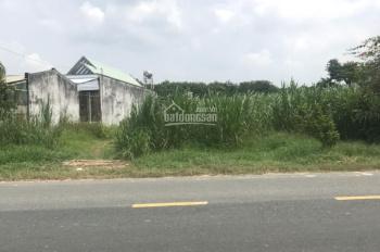 Cần bán đất mặt tiền đường Nguyễn Thị Rành, xã Phú Mỹ Hưng, Củ Chi