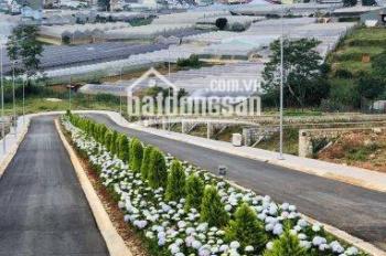 Bán đất nền dự án biệt thự Villa Town, P. 8, TP. Đà Lạt. LH 0898080003