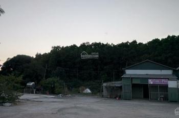 Bán đất trồng rừng ở xã Quảng Minh, Huyện Hải Hà, Tỉnh Quảng Ninh