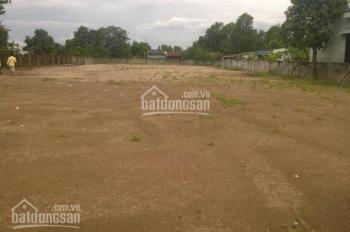 Cho thuê đất 30.000m2 mặt tiền đường Đào Trí, P. Phú Thuận, Quận 7