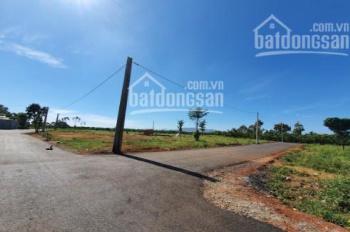 Mở bán 10 suất nội bộ khu dân cư Nguyễn Đình Chiểu ngay Hồ Nam Phương. Giá 690 triệu SHR thổ cư