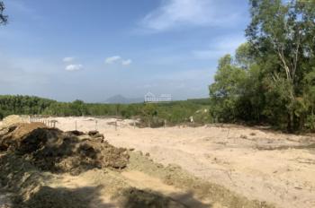 Gấp! Chính chủ bán đất sào gần thị xã La Gi có thổ cư tại khu bàn cờ chợ Sơn Mỹ 400 nghìn/m2 SHR
