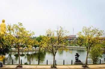 Để tiền sinh ra tiền - đầu tư đất nền BT của hiếm mặt đường Tây Thăng Long. LH 0868002286