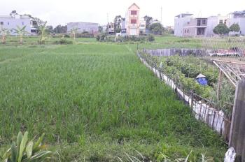Chính chủ đại hạ giá đất mùa CoVid Hà Liễu - Phương Liễu - Quế Võ - Bắc Ninh. 90m2, 750tr