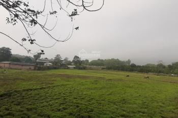 Bán 2850m2 đất tại xã Hòa Sơn, Lương Sơn, Hòa Bình, giá rẻ