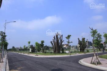 Chính chủ cần bán gấp trước Tết mảnh 75m2 đất dự án Happy Land Đông Anh, giá siêu tốt