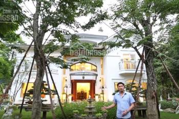 Chính chủ bán lô biệt thự 600m2, khu Vườn Mai, KĐT Ecopark, giá bán 36 tỷ full nội thất cao cấp