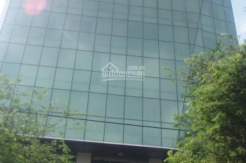 Cho thuê văn phòng Estar đường Võ Văn Tần, quận 3, DT: 160 - 200m2. LH: 0935.619.793 - 0906.391.898