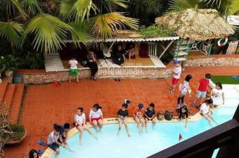 Chuyển nhượng khu resort nghỉ dưỡng Vịt Cổ Xanh Spa Hòa Bình, mời xem