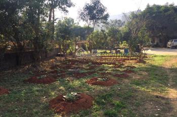 Bán 10.000m2 đất tại thôn 2 Đồng Tuyển - có 7.000m2 thổ cư. Ngay sát mặt đường QL gía cực đẹp