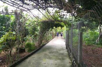 Khuôn viên nhà vườn 6400m2 Lương Sơn, Hòa Bình bán giá rẻ