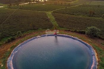 Phân phối đất nền đầu tư nghỉ dưỡng ở Bảo Lộc, vị trí đẹp view đẹp, tiềm năng tăng giá cao