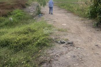 Bán thửa đất nông nghiệp tại xã An Phú, huyện Củ Chi. DT 2,3 hecta, giá 800 ngàn/1m2
