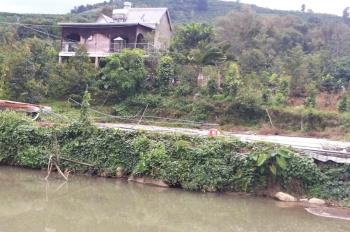 Bán vườn sầu riêng Thái Lan đông đặc cách QL 55 1km