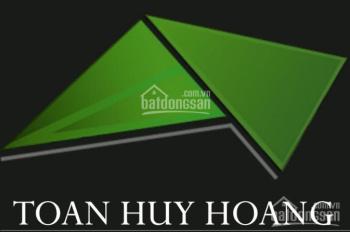 Cho thuê đất đường Trần Hưng Đạo, diện tích 15x25m, giá 50 triệu/tháng - Toàn Huy Hoàng