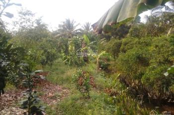 Cần bán 5800m2 đất có sẵn nhà giá 370tr/1công cách vòng xoay Thanh Tân 2km. Xã Thanh Tân Mỏ Cày Bắc