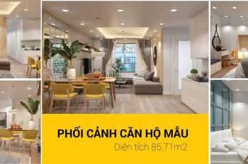 Có nên chọn căn hộ Topaz Elite dịp cuối năm. Nhấn vào để xem và lựa chọn căn hộ ưng ý. PKD Topaz