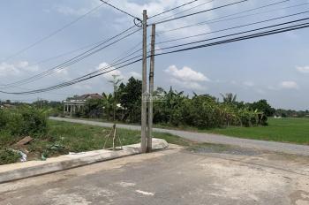 Gấp cần bán đất Tân Trụ, cách QL1A 200m, DT 5x23m thổ cư mặt tiền đường nhựa 8m khu dân cư đông đúc