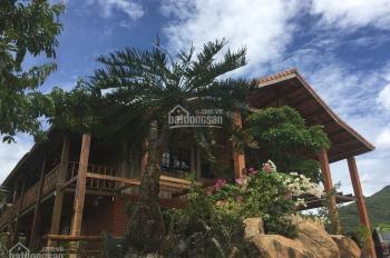 Cho thuê villa gỗ + hồ bơi tổng diện tích 1600m2. Cách biển 50m, view biển + view núi cực đẹp