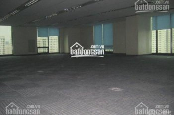 Cho thuê văn phòng phố Dương Đình Nghệ, DT 50 - 100 - 150 - 200 - 500m2, LH: 0902 255 100