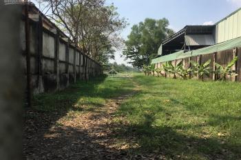 Bán khu đất thổ cư 2,5ha, Số 159A Nguyễn Xiển - P. Trường Thạnh, Quận 9
