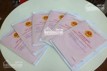 Sacombank HT thanh lý 40 nền đất thổ cư KDC Hai Thành mở rộng Q. Bình Tân, an cư lý tưởng