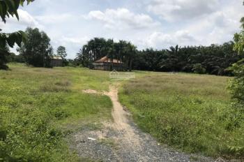 Bán đất thổ cư 2,6ha đường Số 8, phường Long Phước, Quận 9