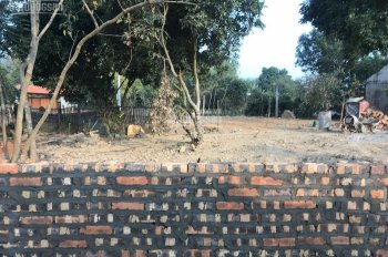 Đất thổ cư vuông cạnh đường rộng 1000m2 Ngọc Thanh Phúc Yên Vĩnh Phúc làm trang trại, nghỉ dưỡng