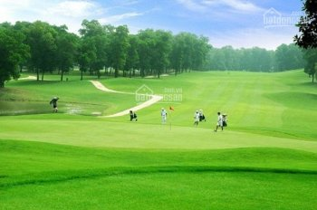 Bán đất thổ cư, sân golf Tam Đảo, 900 - 1000m2, giá từ 3 - 6tr/m2, homestay phù hợp, LH 0986797222