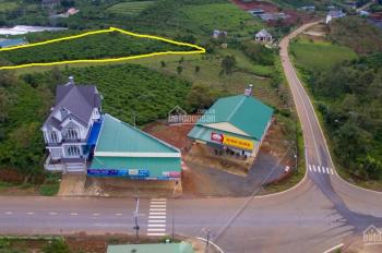 Bán đất 38 x 142m Bảo Lộc ngay ngã 4 Phùng Hưng, Phan Đình Phùng đi thác ĐamBri (xem video)