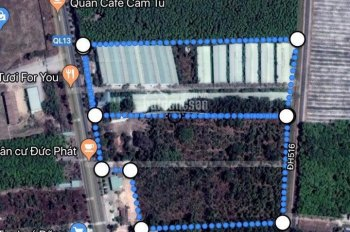 Bán đất ở Bình Dương, giá 185 tỷ, DT 8.3ha, 2 MT Quốc lộ 13 và DH516, ngay trung tâm Bàu Bàng