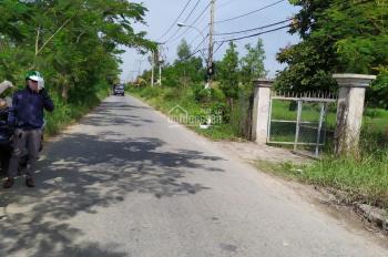Bán lô đất ODT 245m2 Trương Văn Đa, Tân Nhựt, Bình Chánh