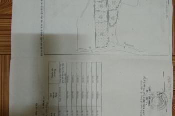 Bán đất NN tại xuân trường Xuân Sơn dt 2ha rưỡi