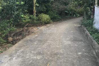Cần bán lô đất 4600m2 đẹp Yên Bài, Ba Vì, Hà Nội, giá bán 2,6tỷ