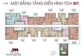 Bán căn hộ VHM Metropolis giá từ 65tr/m2, sổ đỏ, vay 70%, thuê 16tr/th, mpdv 10 năm, lh: 0987709818