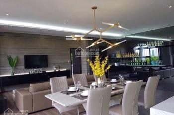 Bán căn hộ biệt thự Mỹ Tú Cảnh Quan Phú Mỹ Hưng Quận 7, DT 250m2 giá 9.2 tỷ, LH: 0912.976.878