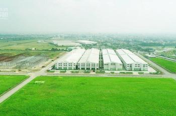Bán đất công nghiệp tại KCN An Phát Complex Hải Dương 10.100m2 đến 100.000m2