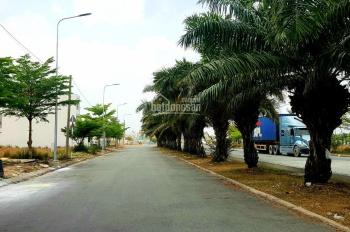 NH Sacombank tổng thanh lý 30 nền đất và 15 lô góc KDC Tân Tạo, Quận Bình Tân - TP. HCM