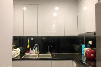 Cho thuê căn hộ 2 phòng ngủ tại Hapulico Complex
