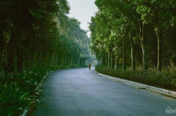 Quỹ căn siêu rẻ biệt thự đảo Ecopark Grand 270m2 chỉ 18,x tỷ, vay LS 0% 36 tháng