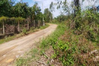 Cần bán mảnh vườn 2300m2, giá 590 triệu ở La Ngà, Định Quán, Đồng Nai, LH 0978962992