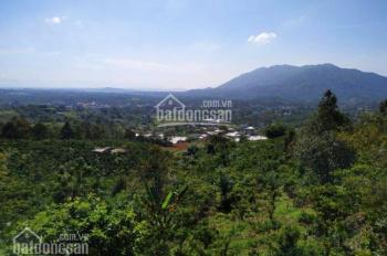 Bán đất vị trí đẹp 750m2 tại trung tâm Bảo Lộc. Liên hệ 0943444588