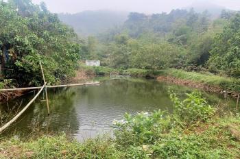 Cần bán 7000m2 đất ở cộng vườn gần Ao Vua 170tr/1sào làm nhà vườn sinh thái tuyệt đẹp, 0986997230
