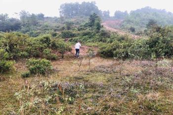 Bán 1400m2 view hồ tại Cư Yên, Lương Sơn, Hòa Bình